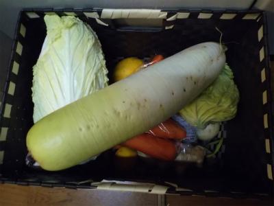 1.11野菜籠