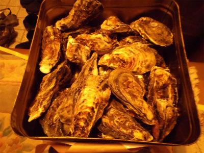 1.29牡蠣2