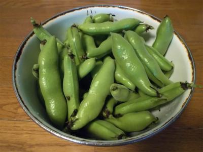 5.15空豆