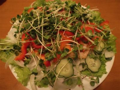 6.13鯖と生野菜1