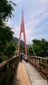 霧の森(吊り橋)