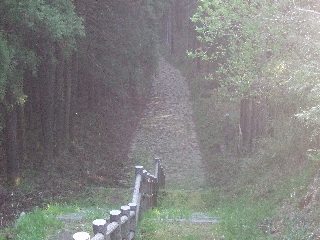旧道の階段_H22.05.01撮影