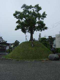 宝池寺の一里塚_H22.05.22撮影