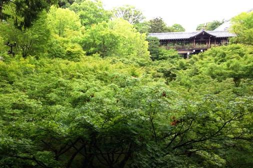 東福寺通天橋_H27.06.06撮影