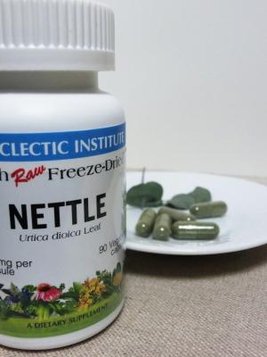 nettle02_s.jpg