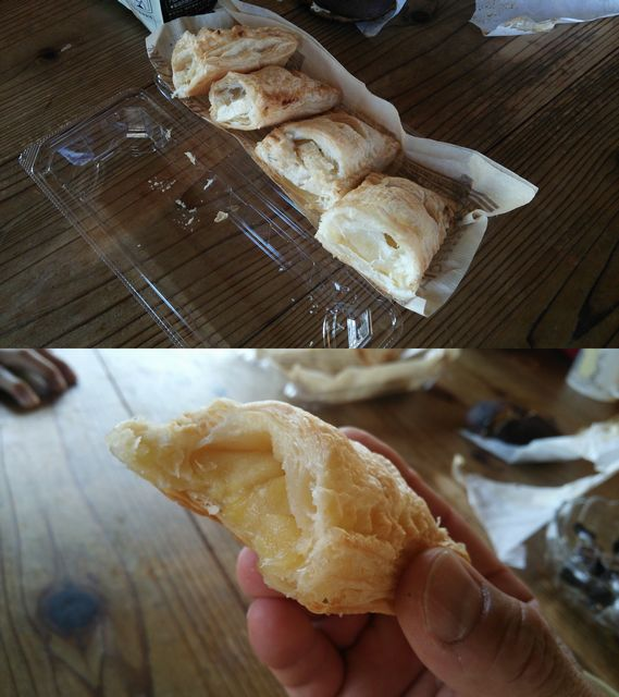 Mさん手作りアップルパイ レモンピール入り20141221