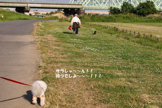 IMG_3035のコピー
