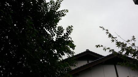 150901_天候