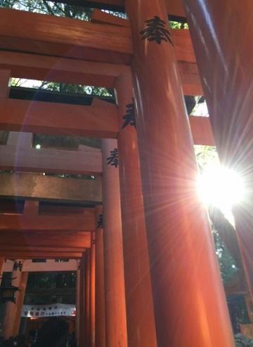 伏見稲荷3