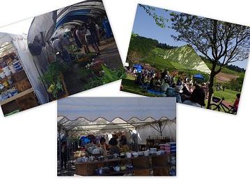 2015-05-05 大村ロサモタ新茶まつり