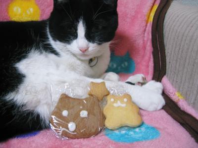 クロとクッキー