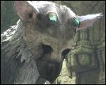 『人喰いの大鷲トリコ』PS4で2016年発売決定!