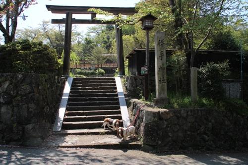 吉野山00011