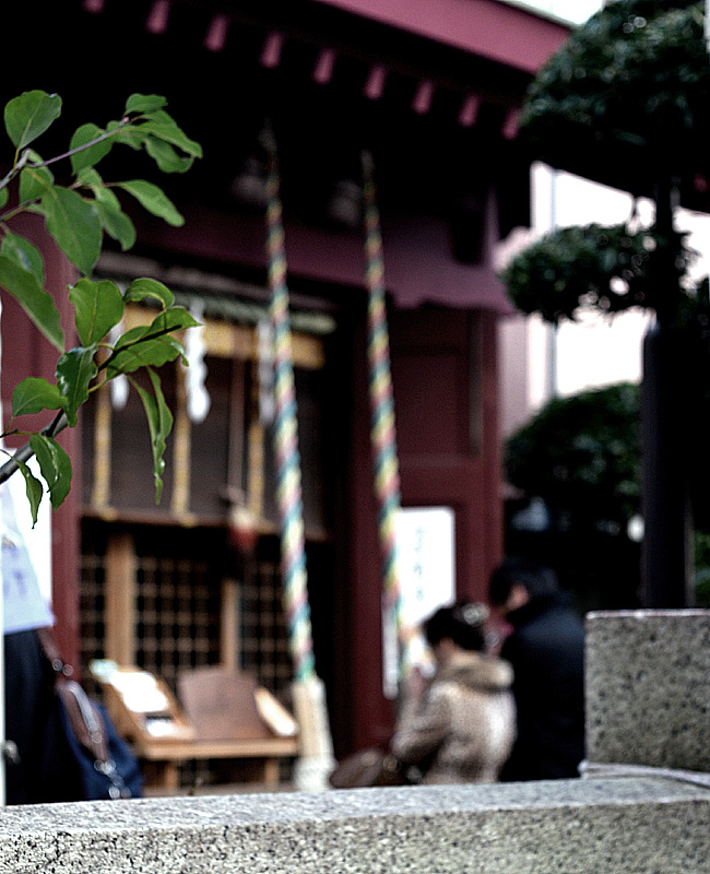 0010_nihonbashi_7_DSC_0320.jpg
