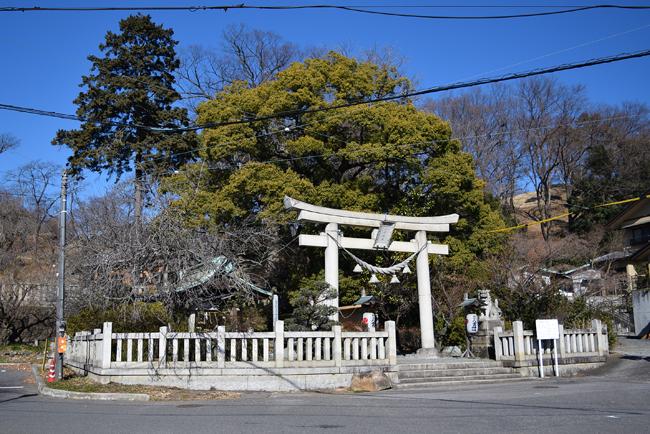 0010_watarase_ashikaga02_DSC_2690.jpg
