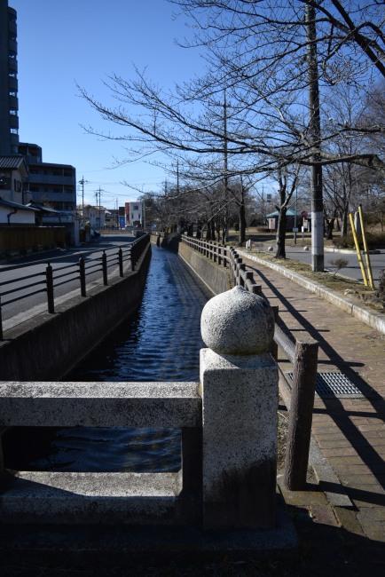 0013_watarase_ashikaga02_DSC_2687.jpg