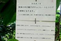 0016_kodaira04_DSC06336.jpg