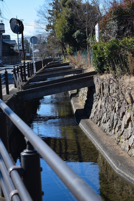 0023_watarase_ashikaga02_DSC_2791.jpg