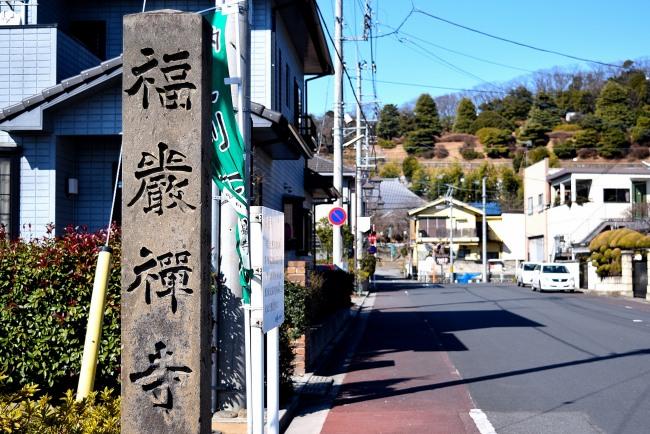 0027_watarase_ashikaga02_DSC_2765.jpg