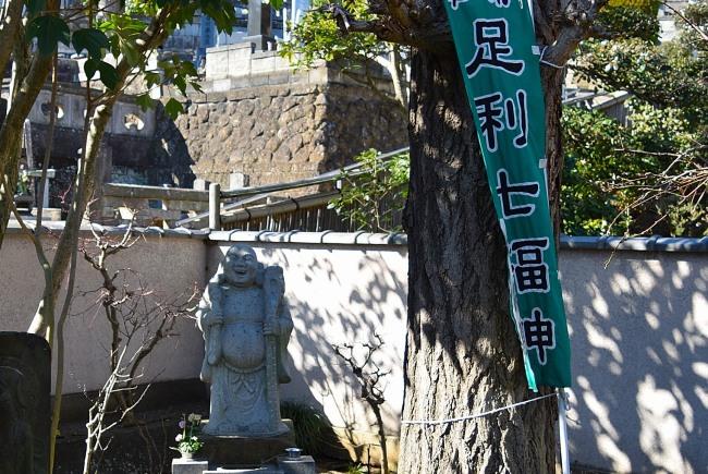 0029_watarase_ashikaga02_DSC_2789.jpg