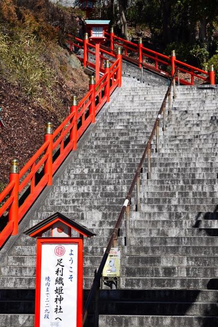 0039_watarase_ashikaga02_DSC_2914.jpg