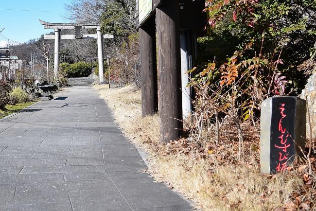 0040_watarase_ashikaga02_DSC_2978.jpg
