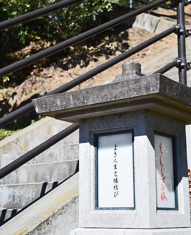 0041_watarase_ashikaga02_DSC_2984.jpg