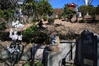 0042_watarase_ashikaga02_DSC_2994.jpg