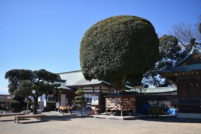 0045_watarase_ashikaga02_DSC_2869.jpg