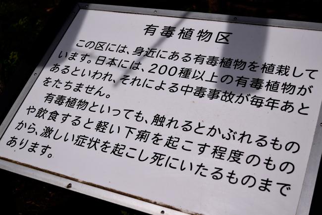 0048_kodaira04_DSC7557.jpg