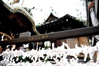 0048_nihonbashi_7_DSC_0502.jpg