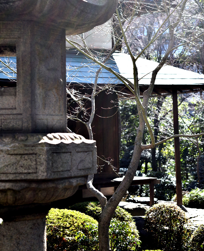 0054_daikamyama_01_DSC_1153.jpg
