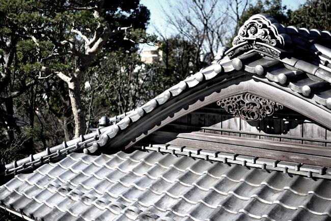 0063_daikamyama_01_DSC_0968.jpg