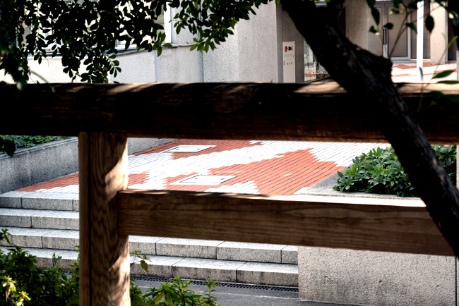 0079_daikamyama_01_DSC_1227.jpg
