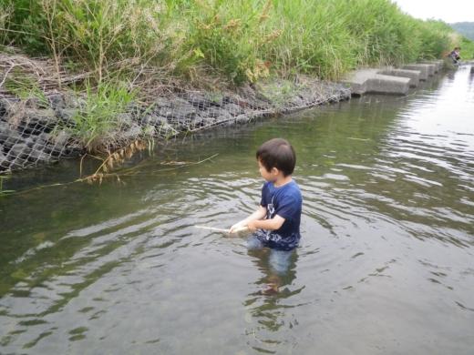 魚とり (2)