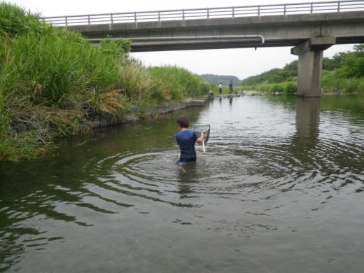 魚とり (3)