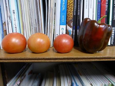 本棚トマトパプリカ