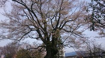 DSC_0566飯田17