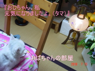 blog_import_5080350ee9b3a.jpg