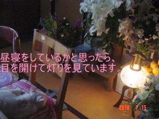 blog_import_50803515a2ec7.jpg