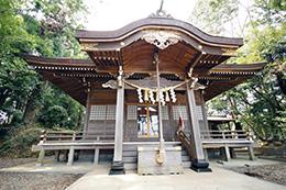 150329日立市 艫神社の杉⑥