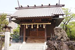 150430豊田神社の欅⑤