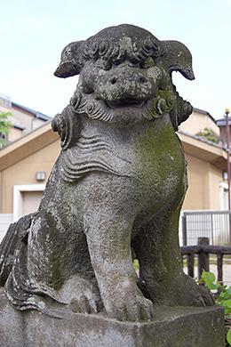 150430豊田神社欅⑦