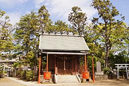 150430二之江神社の欅