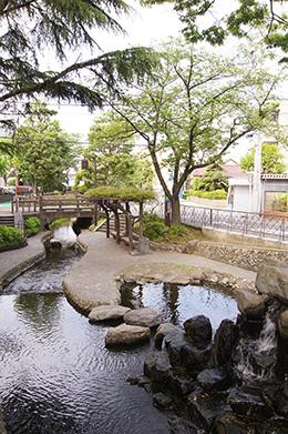150430二之江神社の欅⑤