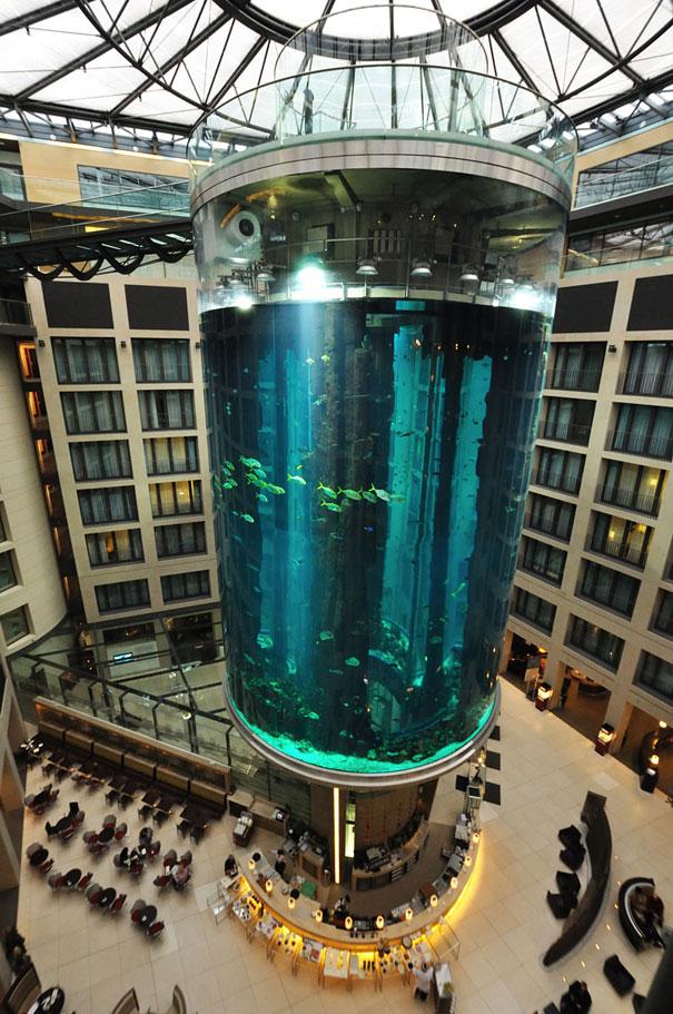 radisson-blu-hotel-aquarium-scuba-diving-berlin-5.jpg