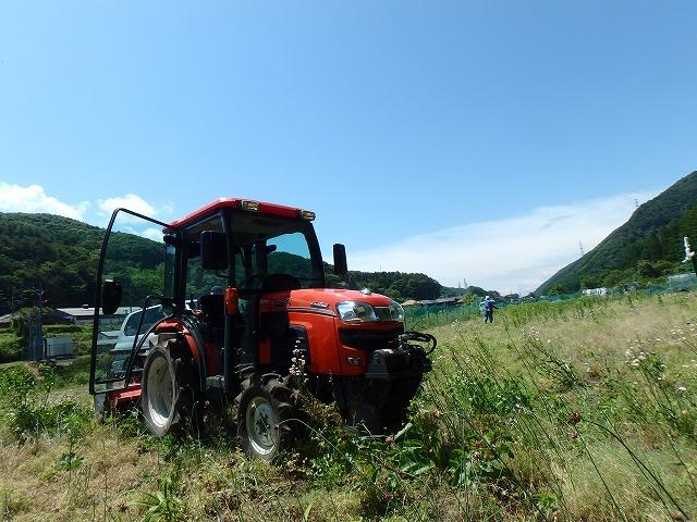 20150607そば畑 (3)