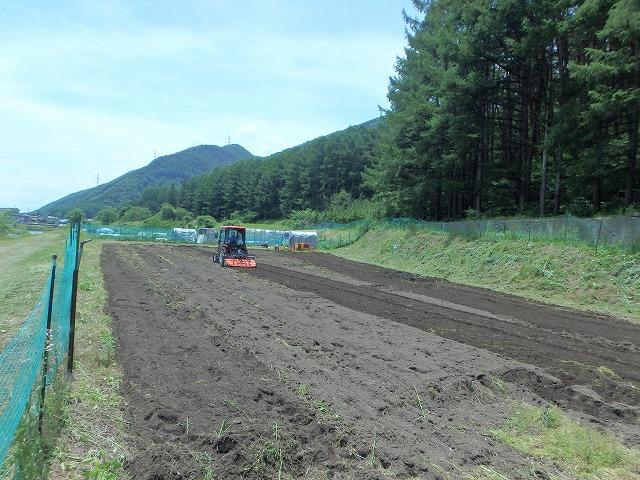 20150607そば畑 (33)
