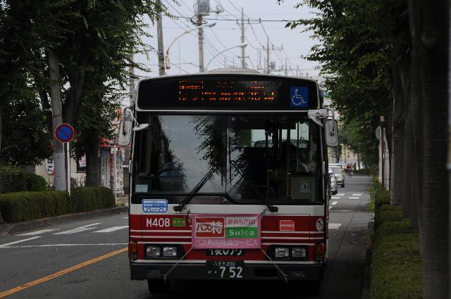 27030808.jpg