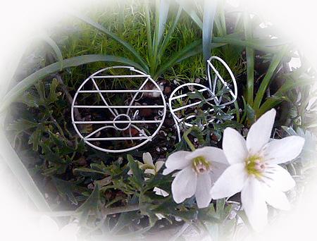 お花に囲まれたテ-ブル・・・